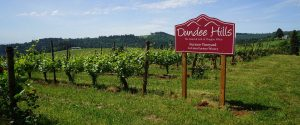 Dundee Hills sign in vineyard