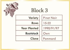 vineyard block graphic