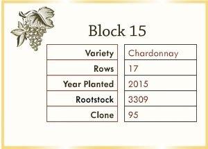 vineyard block graphic