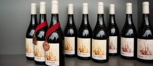 bottles of wine with award medallions
